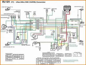 Wiring Diagram Of Motorcycle Honda Xrm 125 Lifan 125