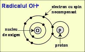 Reacție chimică - wikipedia