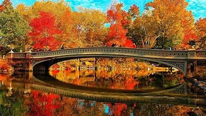 Central Park Wallpapers Bridge Bow Fall Desktop