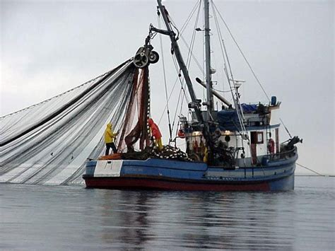 Alaska Fishing Boat Jobs Pay by 10 Best Ideas About Fishing Boats On Pinterest Charter