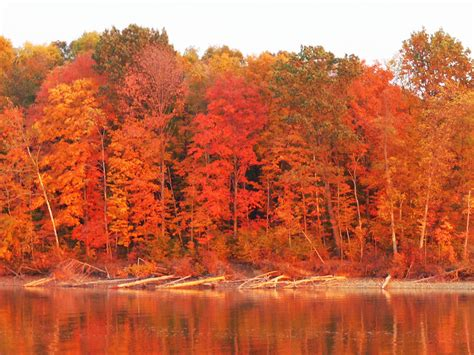 times  places  view fall foliage