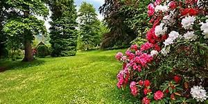 Einfaches Gemüse Für Den Garten : die sch nsten pflanzen f r den eigenen garten ~ Lizthompson.info Haus und Dekorationen