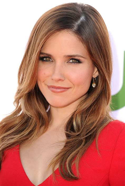 Sophia Bush Hot Sexy Swimsuit Photos Videos And Images