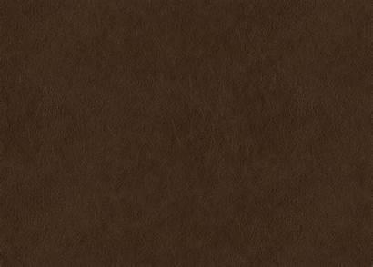 Brown Leather Swatch Dark Ethan Allen Sherwood