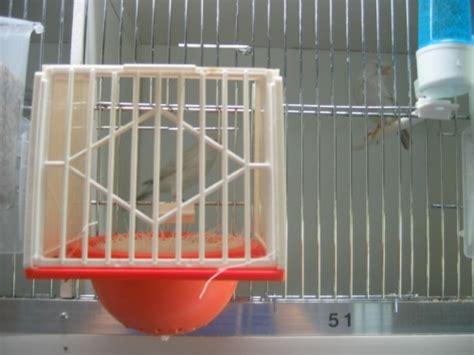 nid exterieur accroch 233 sur la porte mangeoire au paradis