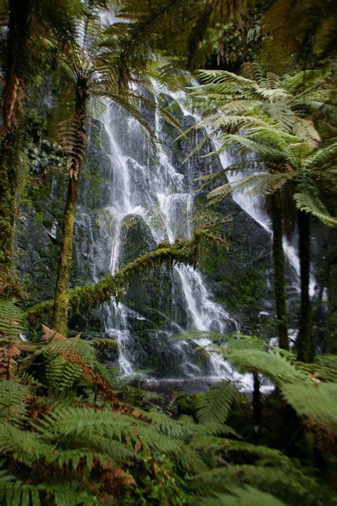 Treetops Lodge, Rotorua