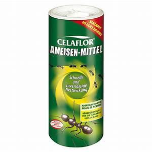 Mittel Gegen Ameisen : celaflor ameisen mittel 500 g 7527 ameisenmittel iahd pflanzenschutz iah duenger ~ Frokenaadalensverden.com Haus und Dekorationen