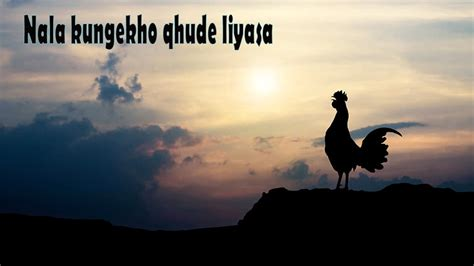 zulu proverbs  sayings zululand tourism zululandnews