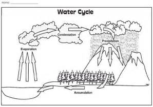 Check Out This Illustration Of The Water Cycle