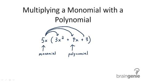 multiplication of monomials by polynomials ck 12 foundation