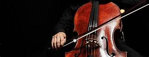 10 Interesting Facts About The Cello