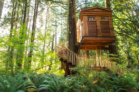 Britney Spears Would Love These High-design Treehouses