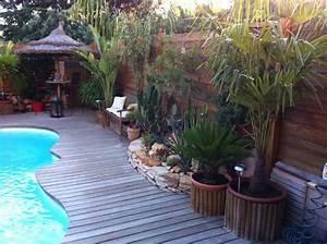 ordinaire amenagement petit jardin avec piscine 3 petit With amenagement petit jardin exotique