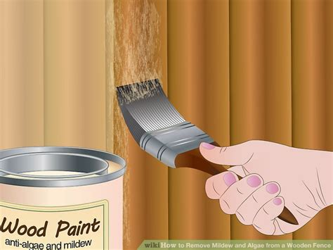 The 2 Best Ways To Remove Mildew And Algae From A Wooden Fence