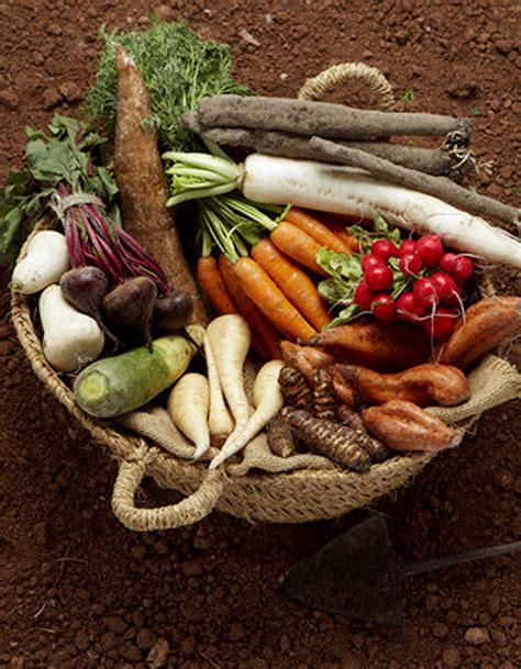 recette de cuisine de saison légumes de saison pour 4 personnes recettes à table