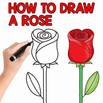 Rose Draw Step Easy Drawing Beginners Fun