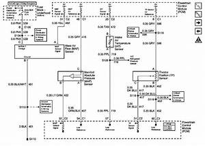 1998 Ls1 Wiring Diagram