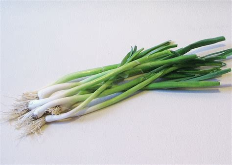 Suen Sam/Garlic Shoot -Mitro Fresh