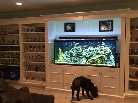 basement sports shelf unit  fish tank   middle