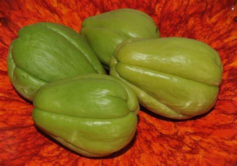 cuisiner les christophines plantes légumes et fruits