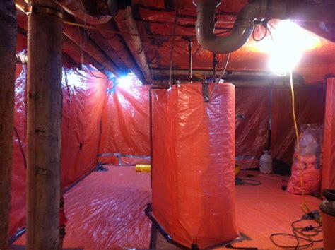 photo gallery   asbestos  mold removal procedures