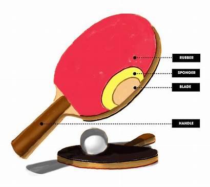 Paddle Pong Ping Tennis Blade Paddles