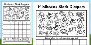 Minibeasts Bar Graph Worksheet    Activity Sheet