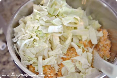 Sweet & Spicy Coleslaw Recipe  Living Well Spending Less®