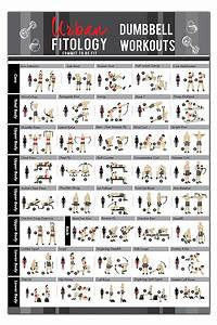 Buy Dumbbell Exercises Workout Poster