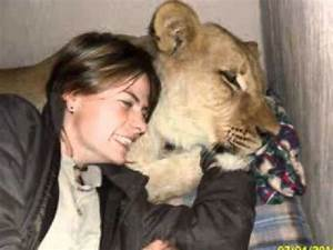 Borne Free Lyon : elsa the lioness not only a lion but also my life youtube ~ Medecine-chirurgie-esthetiques.com Avis de Voitures