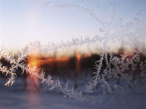 trees  lake  sky  winter  stock photo