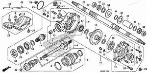 Honda Recon 250 2003 Rear Axle Diagram