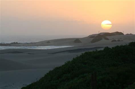 Dune Dreams