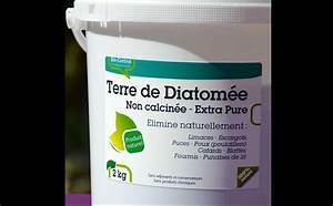 Ou Trouver De La Terre Végétale : o acheter de la terre de diatom e alimentaire pour les ~ Premium-room.com Idées de Décoration
