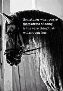 Sometimes what ... Free Horses Quotes