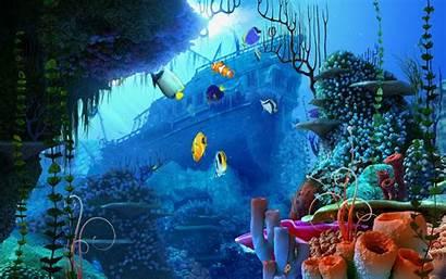 Underwater Desktop Ocean Fish Pixelstalk