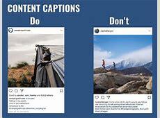 10 Tips to Create an Instagram Editorial Calendar BlogPaws