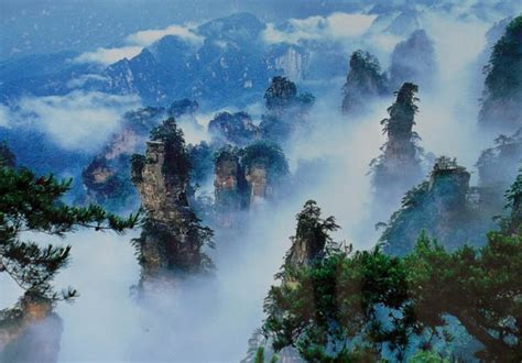 images pictures  zhangjiajie national forest