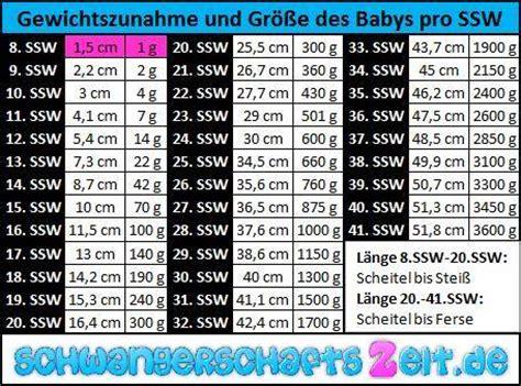 24 ssw gewichtszunahme tabelle