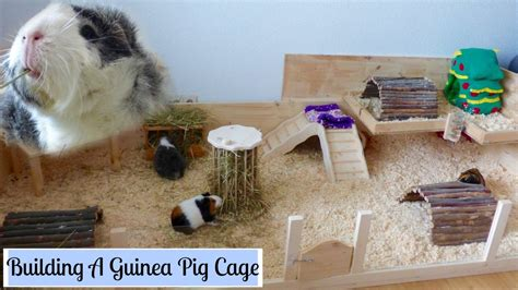 build   wooden guinea pig cage diy cage
