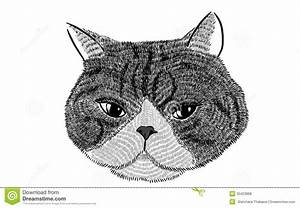 Illustration Of Face Cat Royalty Free Stock Photos - Image ...