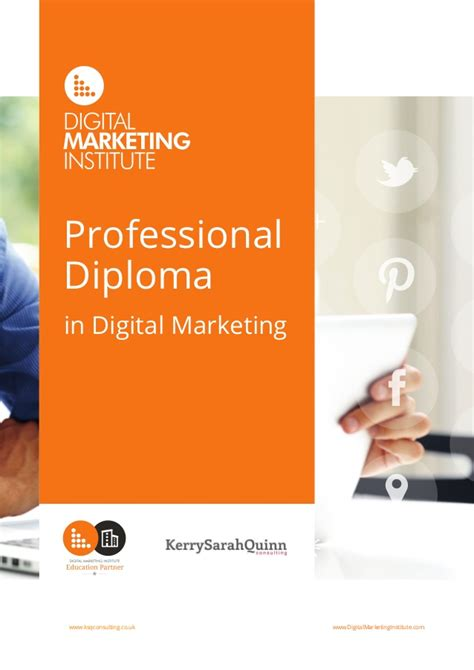professional diploma in digital marketing digital marketing diploma brochure 2016