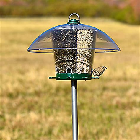 perky pet 174 universal bird feeder pole