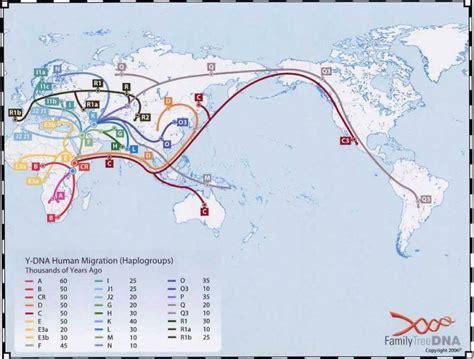 africa retracing human evolution  migration