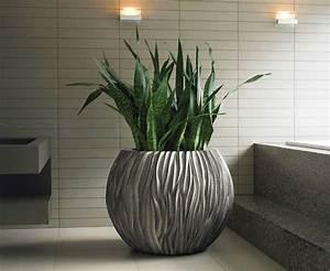 Zimmerpflanze Für Badezimmer : 1001 ideen f r zimmerpflanzen f r wenig licht ~ Sanjose-hotels-ca.com Haus und Dekorationen