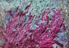gemstone color spectrum stock photography image
