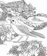 Gazebo Coloring Template sketch template