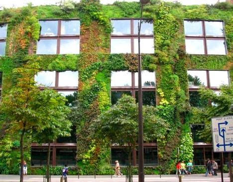 mur végétal stabilisé 11 buildings wrapped in gorgeous green and living walls