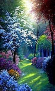 Lovely, Nature, Wallpaper, By, Veer, Vz, -, 7d