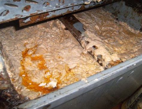 83 Best Conventional Passive Grease Traps Images On Pinterest